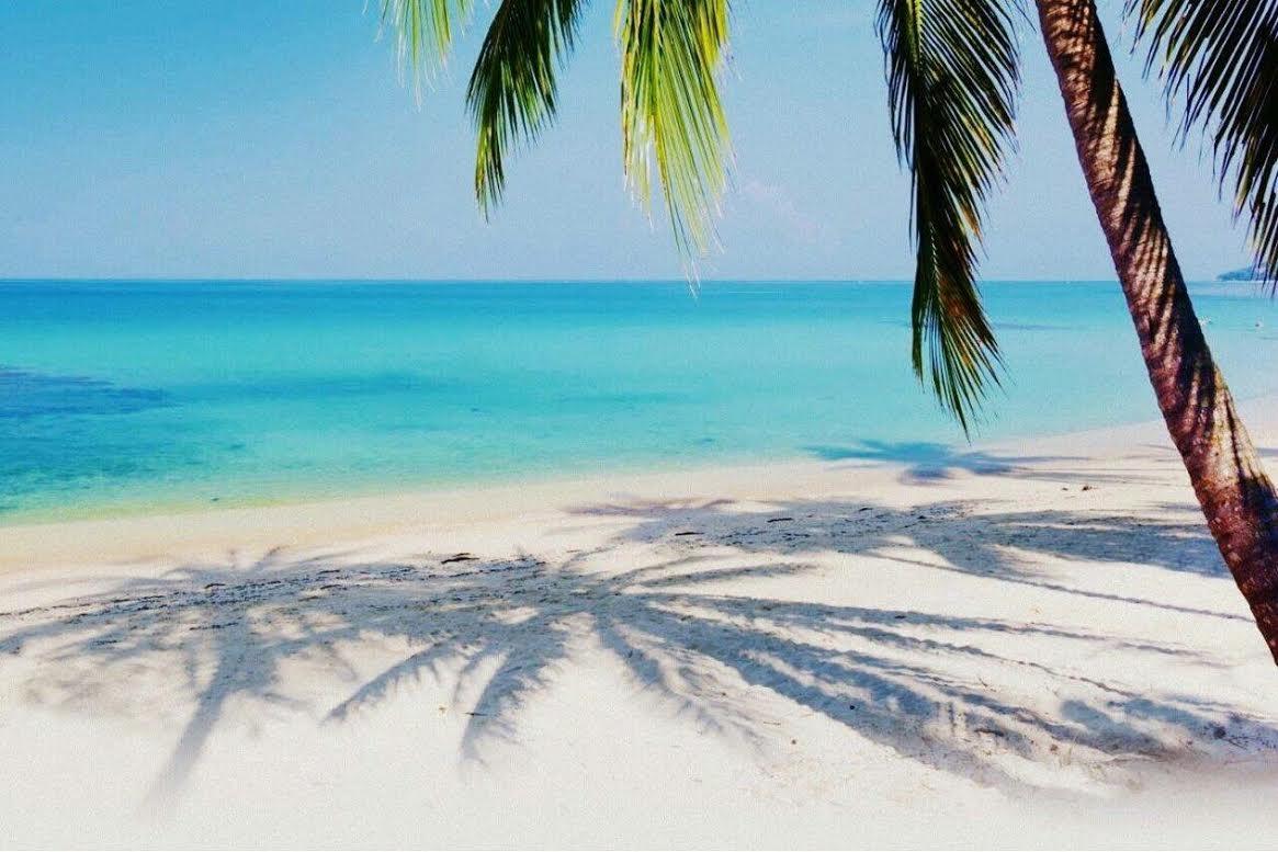 Florida Keys Vacation Home Rentals
